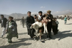 Men carry their dog injured  during dog fighting in the district Chaman-e-Babrak in Kabul, Afghanistan on November 26, 2004. Photo Michal Novotny